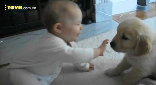 Khi bé và cún là đôi bạn thân